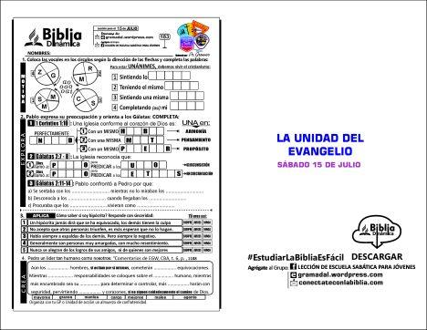 183 LA UNIDAD DEL EVANGELIO VINEA
